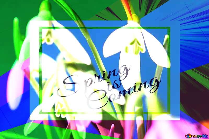 Flowers spring template card frame with inscription Spring is Coming №38312