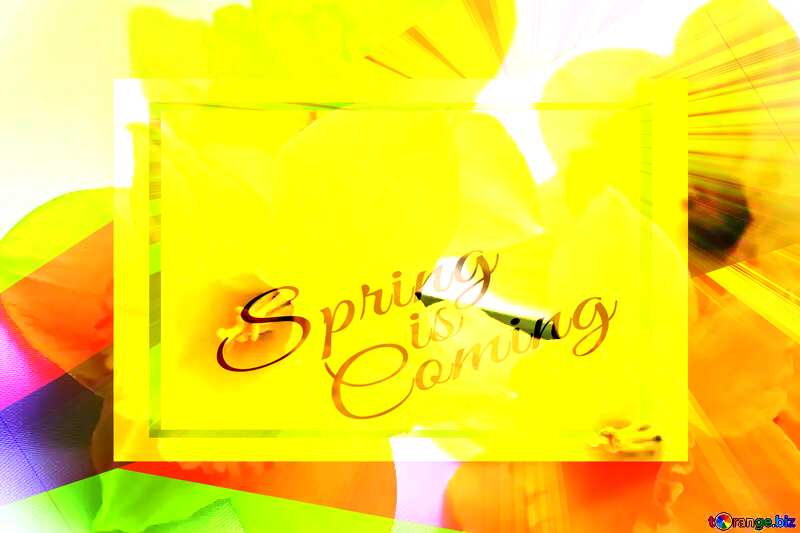 Yellow flowers template card frame with inscription Spring is Coming №29991