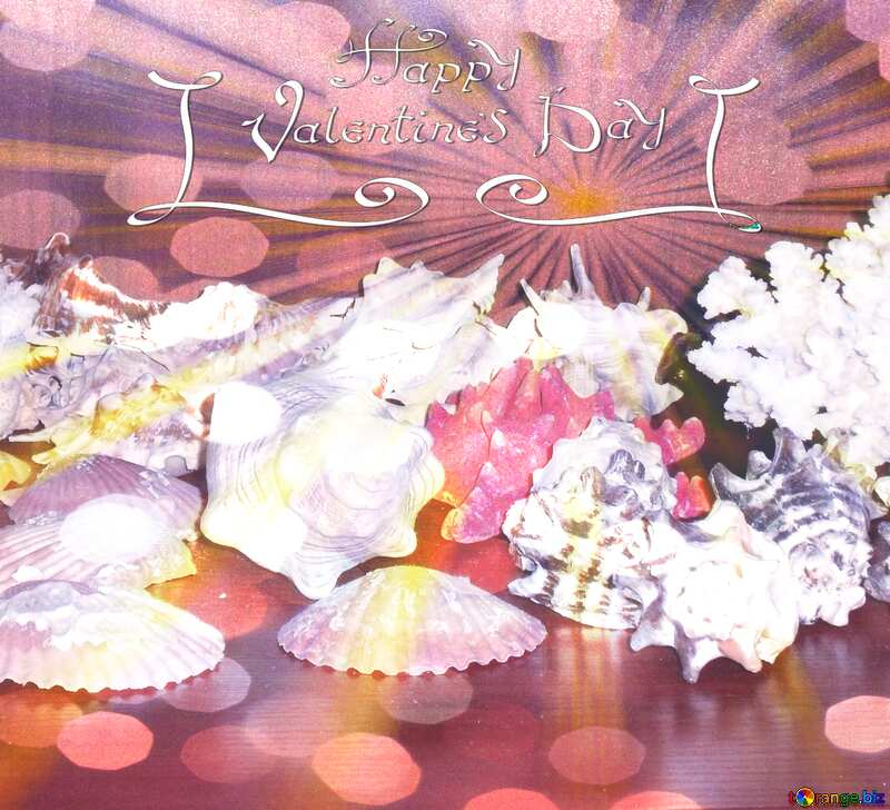 Collection of seashells Happy Valentines Day card №18159