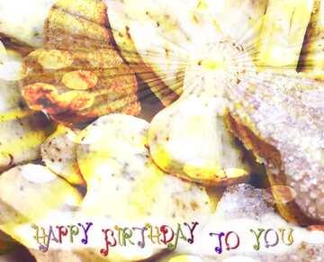 Carte postale Joyeux anniversaire en anglais.