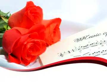 The effect of contrast. Vivid Colors. Red ribbon border.