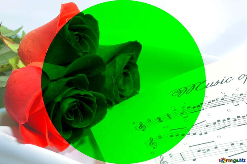 Card greetings music rose and notes blank template №7255