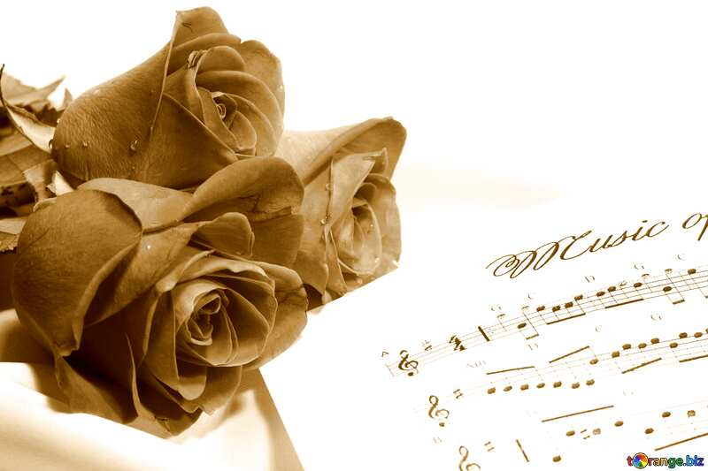 Monochrome Card greetings music rose and notes blank template №7255