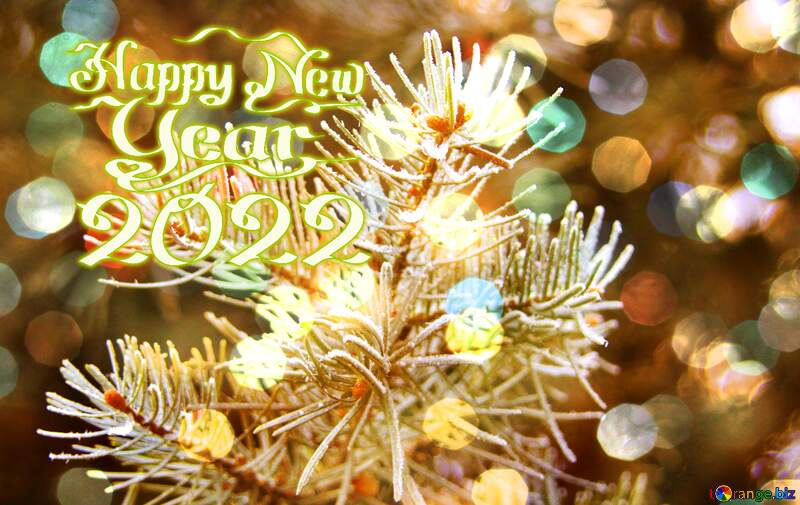 Frosty spruce branch  Happy New Year 2021 Card Background №426
