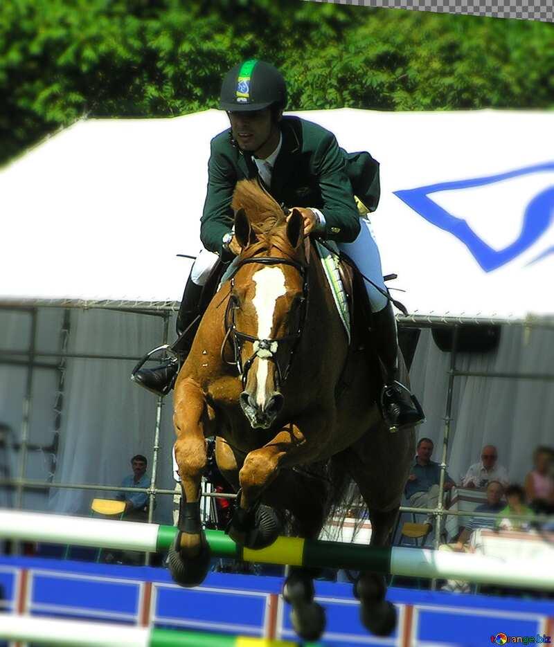 The horseman on horse jumps №303
