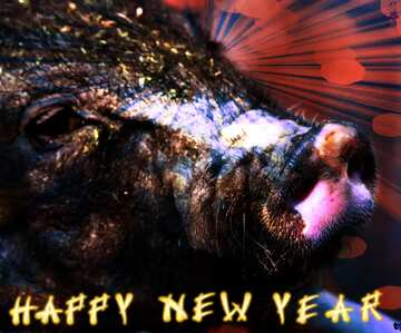 The effect of the hard dark. Fragment. Card with text Happy New Year.