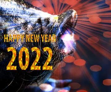 Die Wirkung des viel dunklen. Bruchstück. Happy New Year 2020.