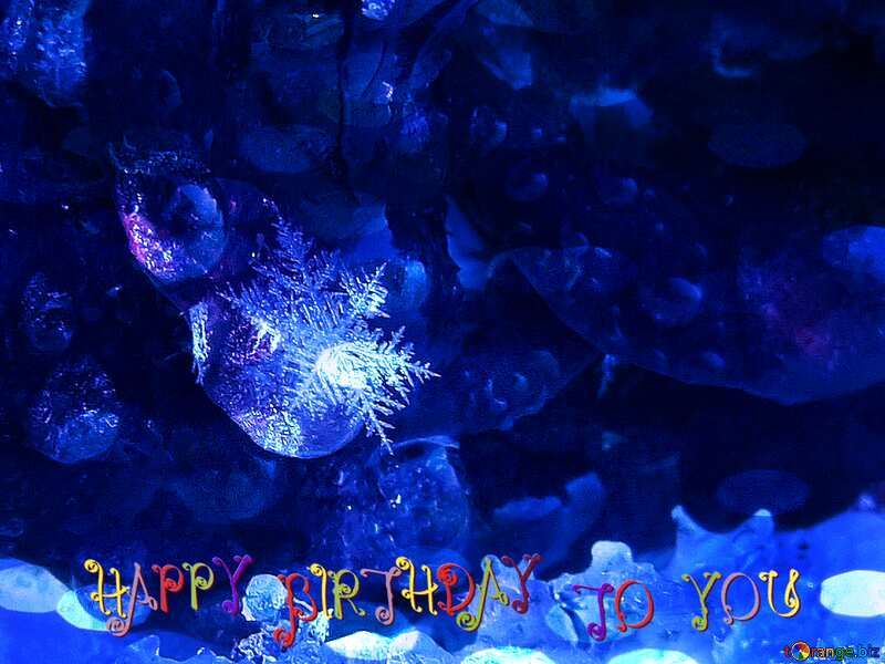 Blue Rose with Snowflake Happy Birthday Card №16989