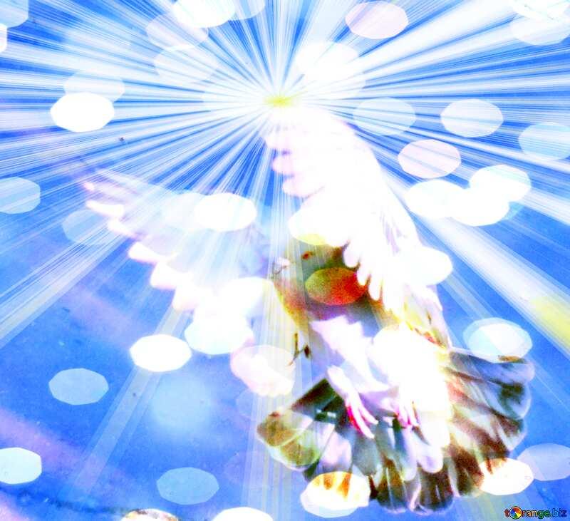 Dove Peace Symbol №42207