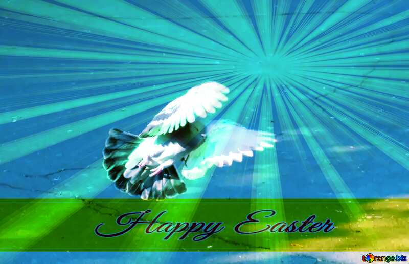 Happy Easter Background With Pigeon №42207
