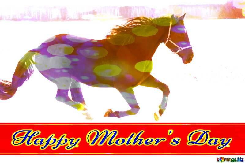 Happy Mothers Day card  with  Horse №18191