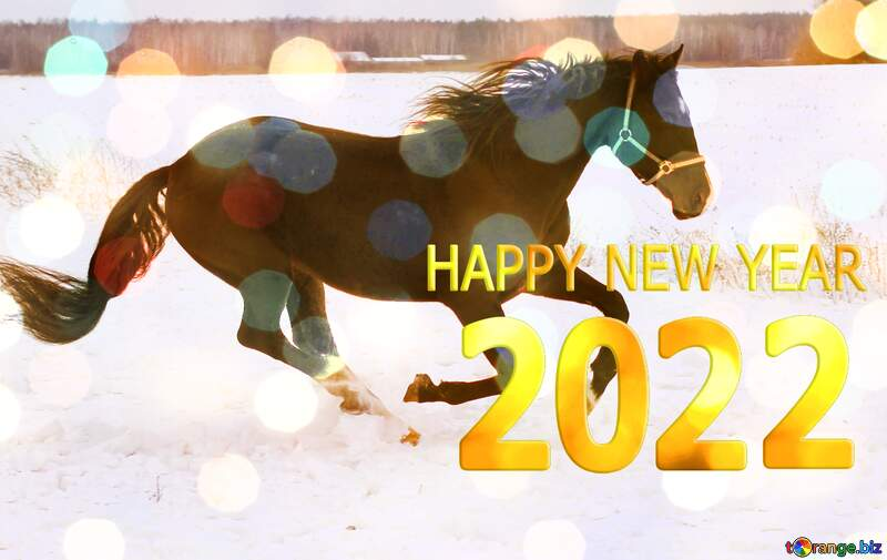 Horse  Creative Card Happy New Year 2021 №18191