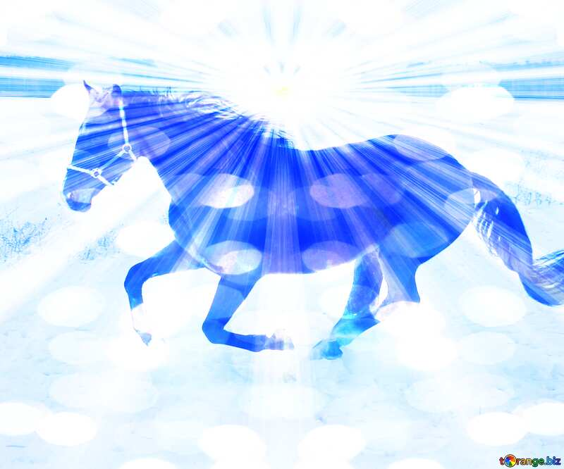 Horse snow blue card background №18191