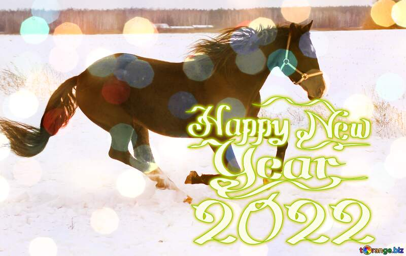 Horse on snow  Creative Card Happy New Year 2021 №18191