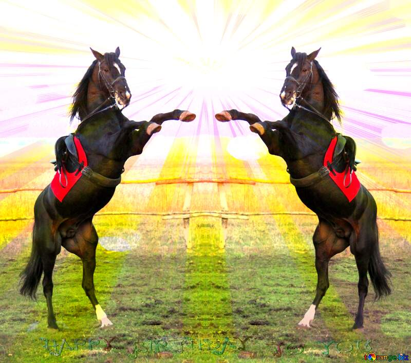Horse standing Happy Birthday Card Background №1288