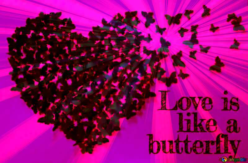 Lettering stylish love text with butterfly. №49682