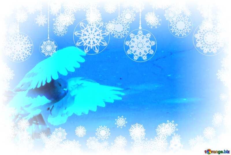 Pigeon flies Winter Card Background №42207