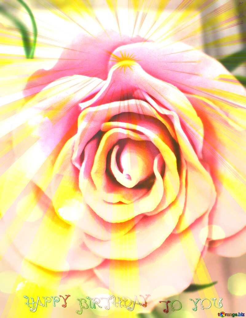 Rose flower  Happy Birthday Card Background №48638