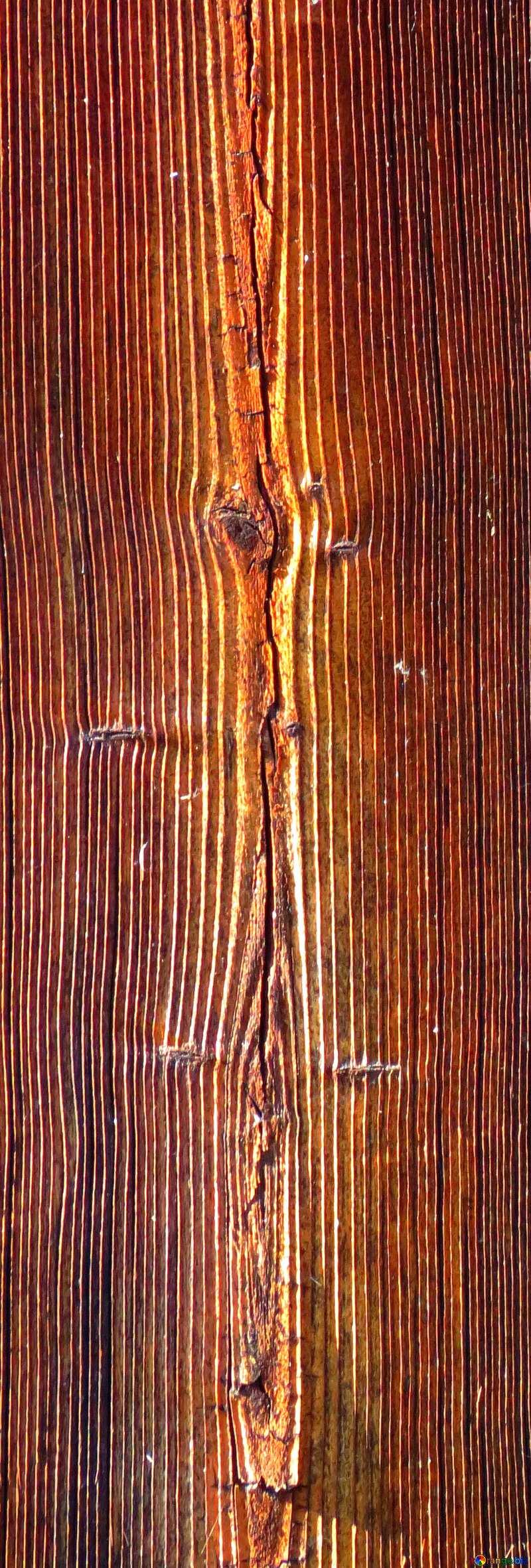 Bright colors. Texture of wood fibers. №28735