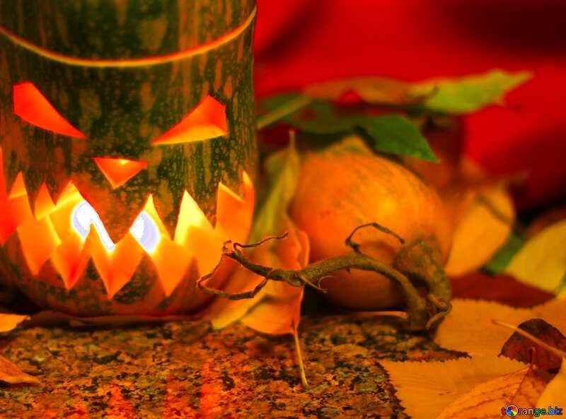 Immagine del profilo. Luce di strega. №24288