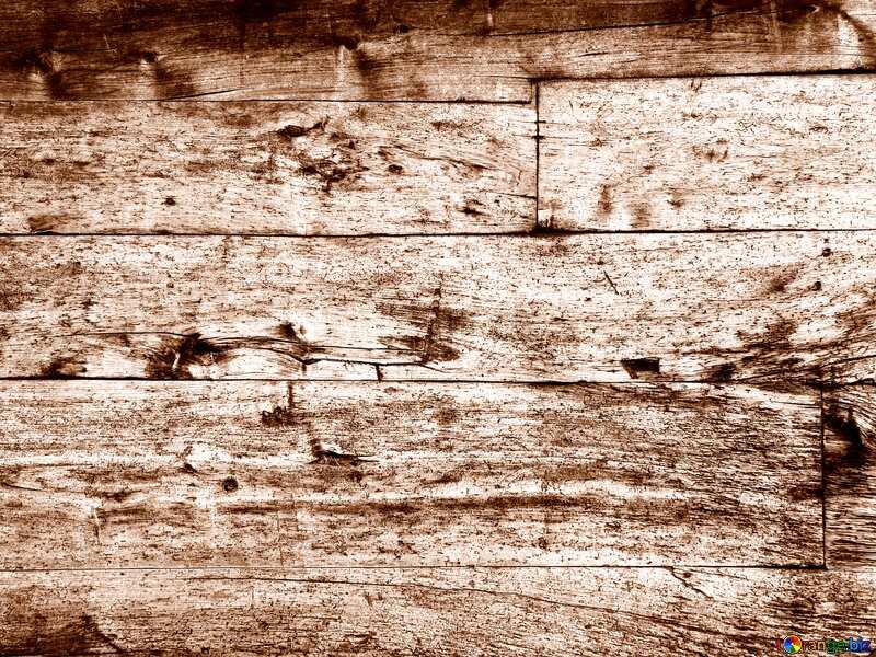 Monochrome. Texture of wood. №28696