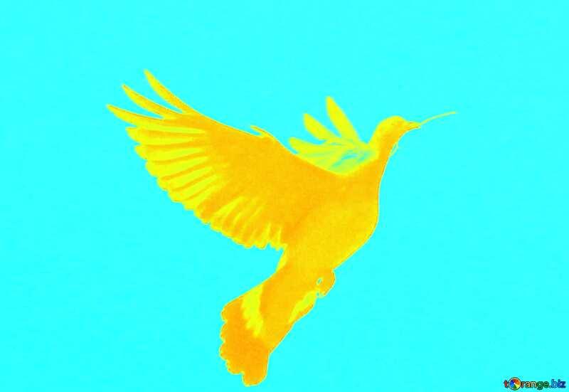 Dove peace №33802