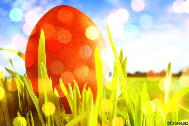 Easter background №8179