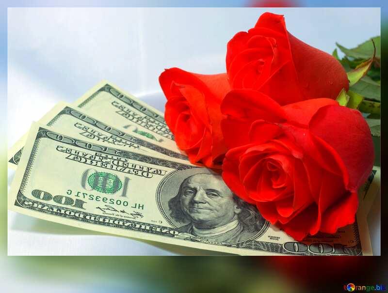 Roses dollars card №7269
