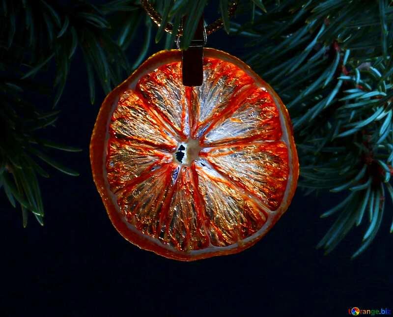 orange gry №48135
