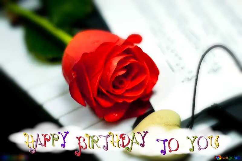 happy birthday rose №7200