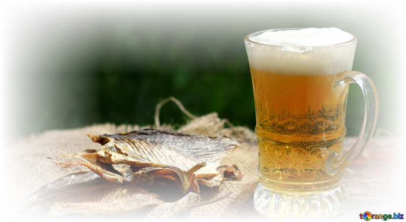 Fish and beer №34485