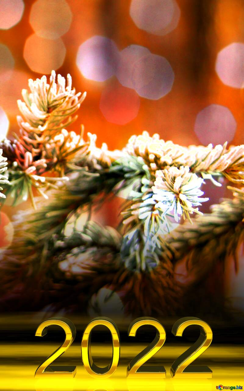 2022 gold digits   Christmas  bokeh background  The branch of spruce in frost №407