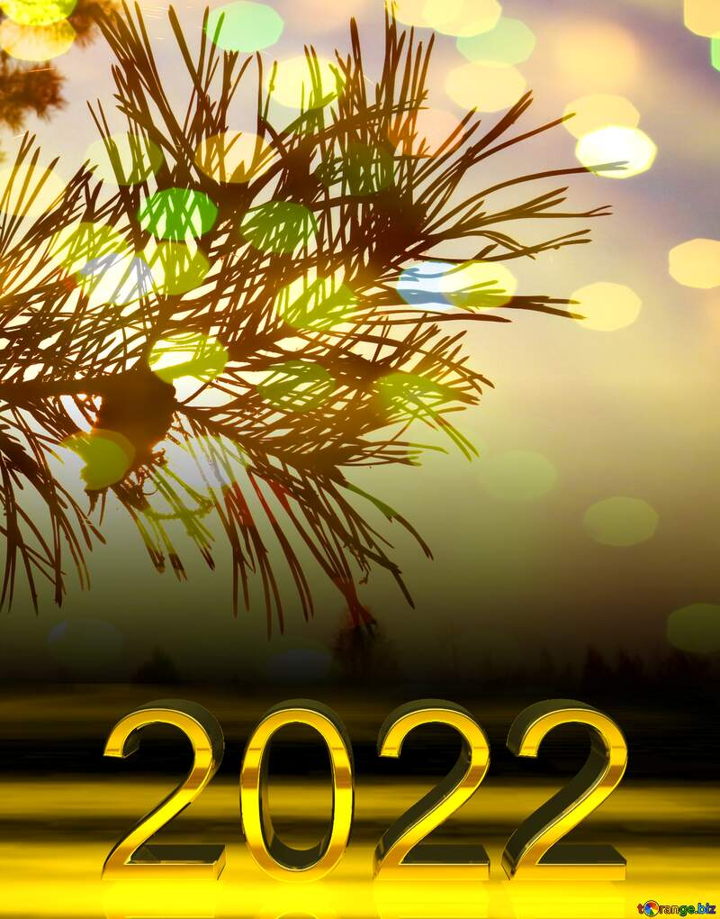 2022 gold digits   Silhouette of pine branches with a cone at sunset №24746