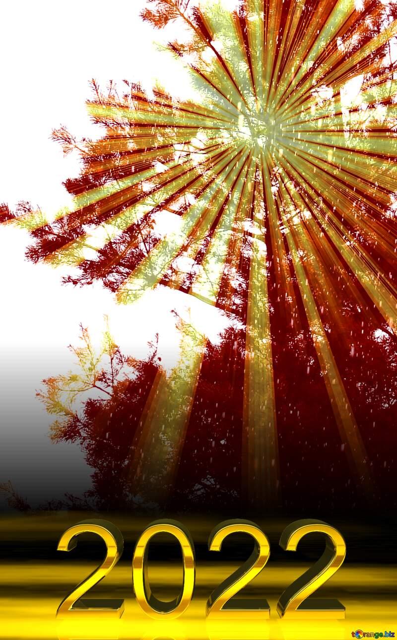 2022 gold digits   sun through pine trees №22299