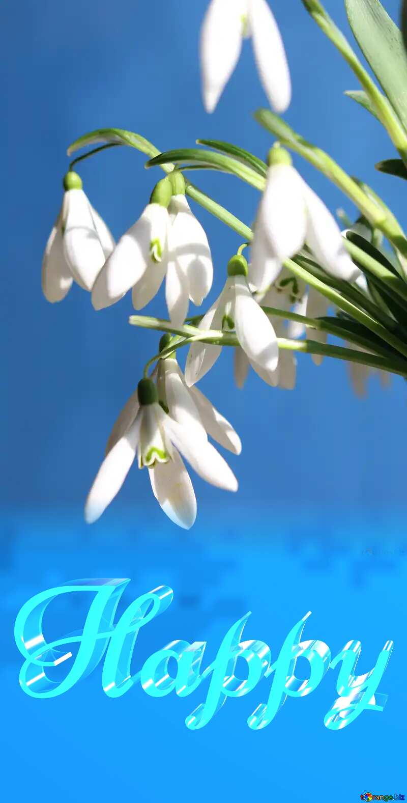 Happy glass blue background Flowers Inscription Spring №38346