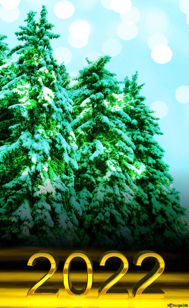 Snow  green pine tree  Snow    2022 gold digits №10529