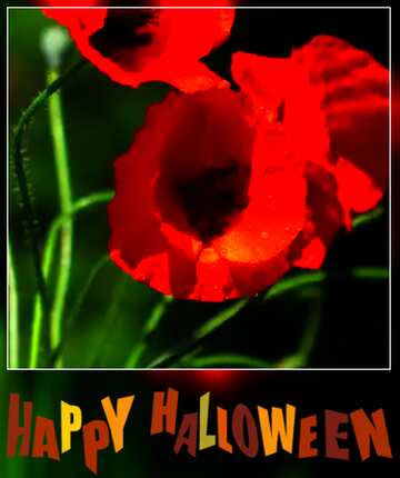 The effect of the dark. Very Vivid Colours. Blur dark frame. Fragment. Happy halloween.