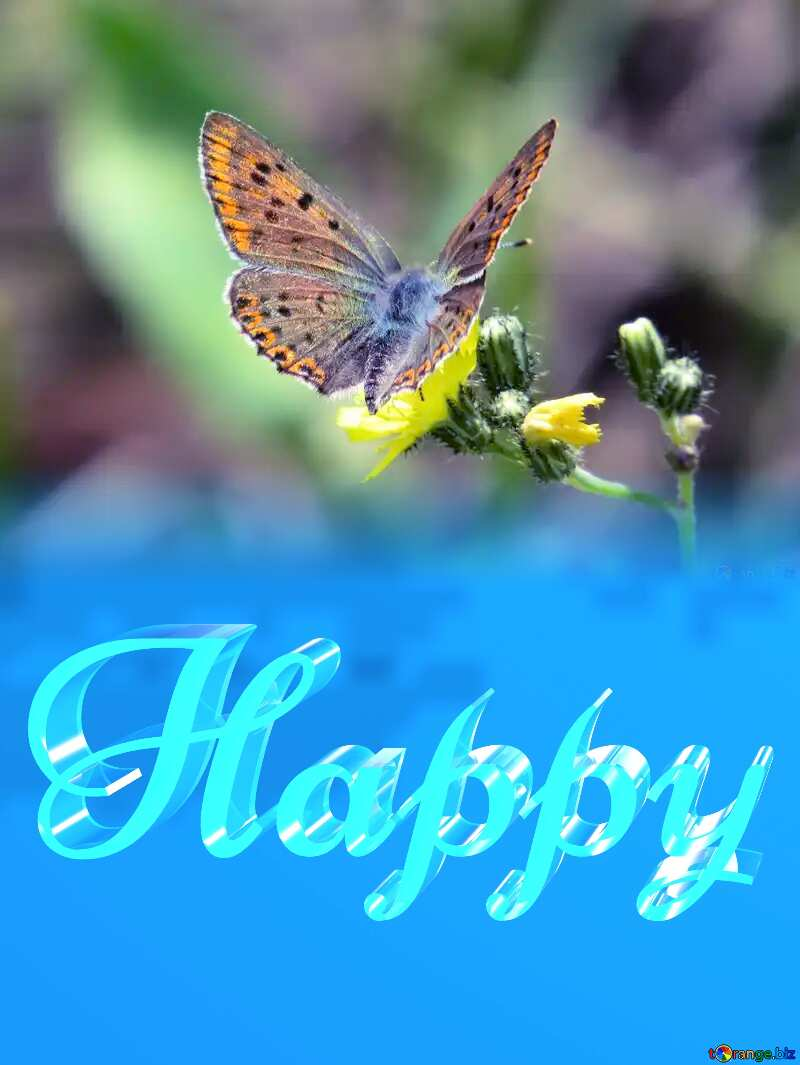 Happy glass blue background Butterfly №25913