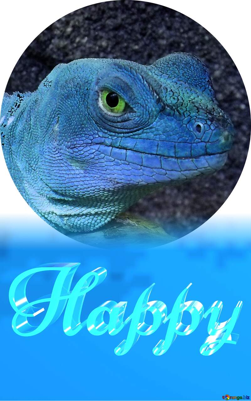 Happy glass blue background Lizard №10697