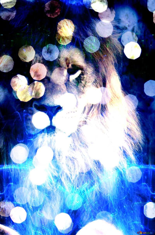 lion background lights №44974