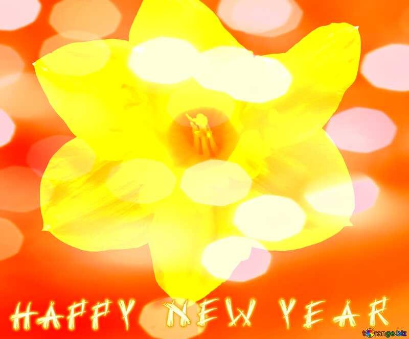 Happy New Narcissus flower on dark background №30906