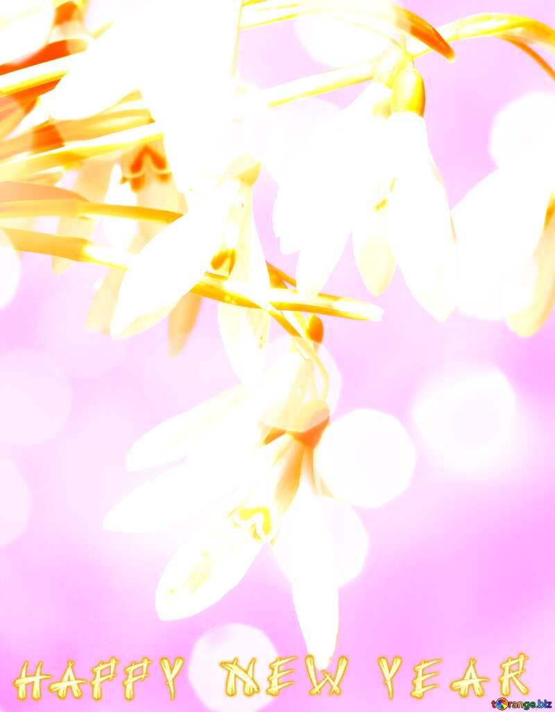 Happy New Year Early spring background №38347