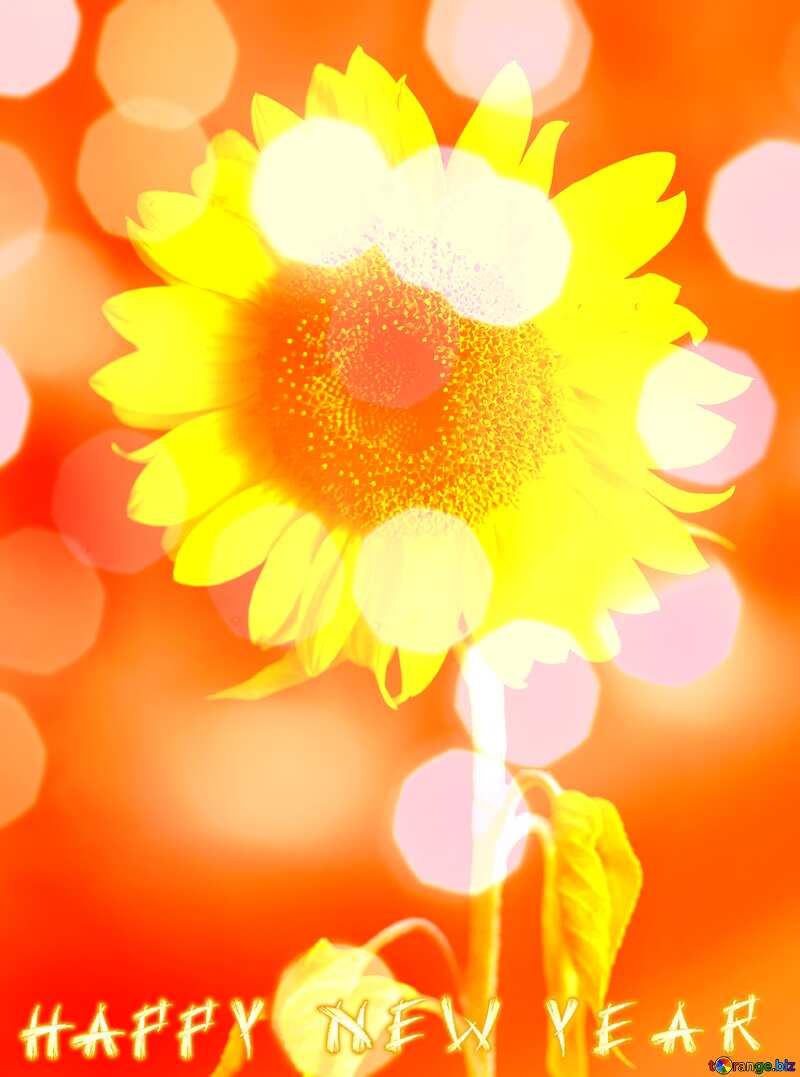 Happy New Year Sunflower flower background №32798