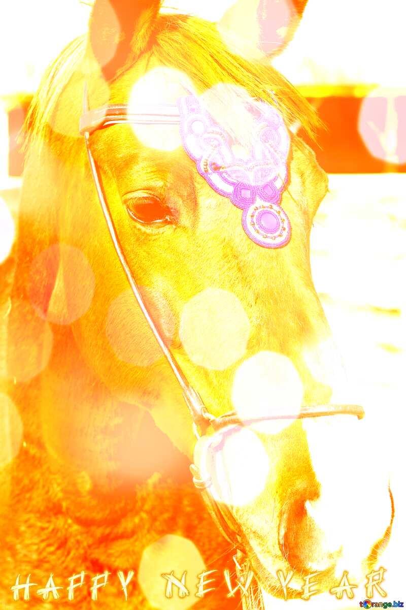 Horses Happy New Year. №49241