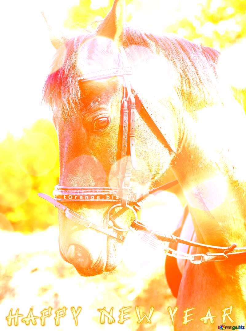Horses Happy New Year. №32344