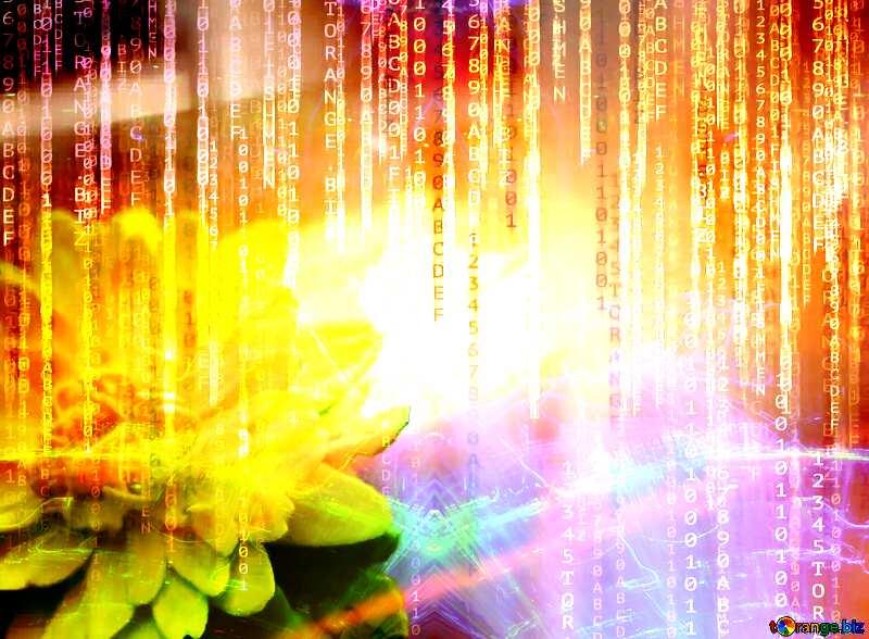Lights template Yellow Flower Binary Code Technology Background №48635