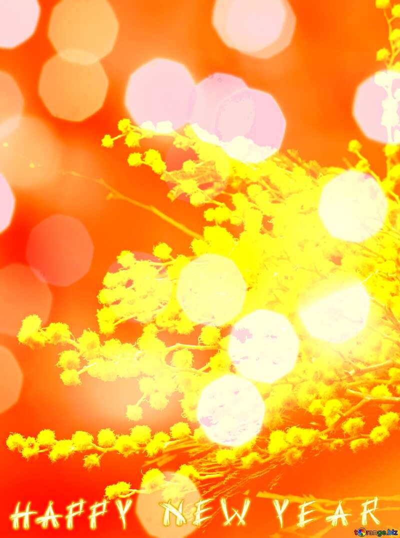 Mimosa flowers isolated on a black background Happy New Year №46286