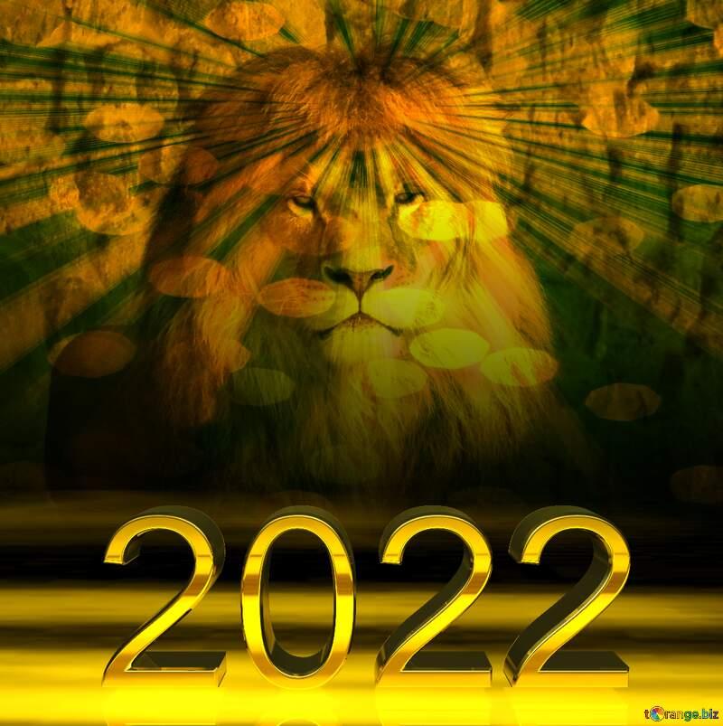 lion 2019  sunlight rays №44974