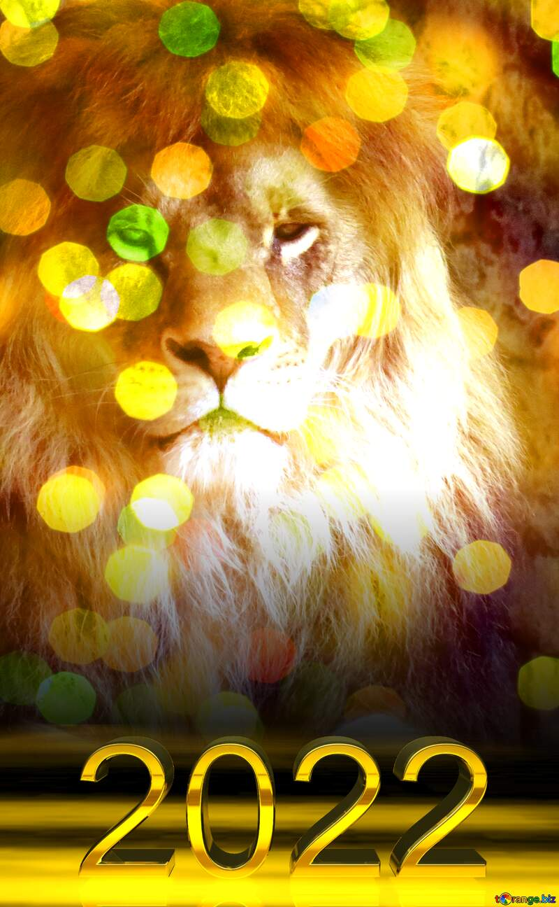 lion Christmas bokeh background 2019 №44974