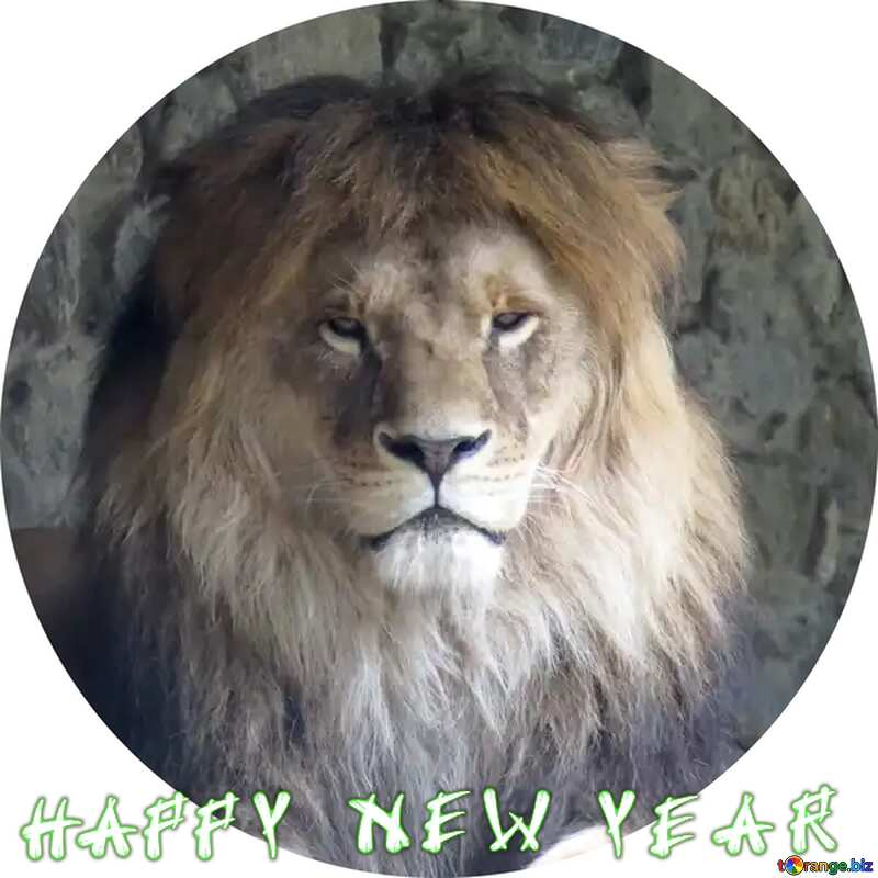 lion happy new year circle frame №44974